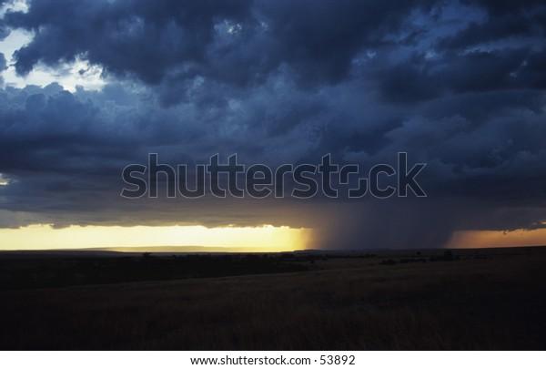 storm over the masai mara