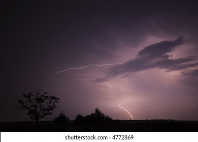 Storm with a tree