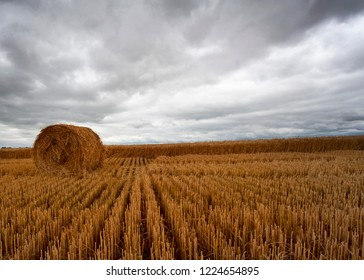 Stormy clouds rolling in over a wheat field