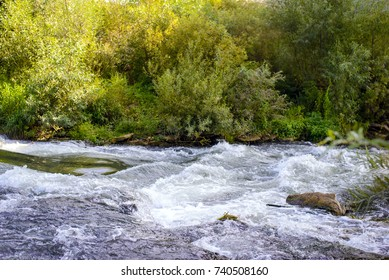 Stormy cold clear water of a mountain river with green coast in the summer