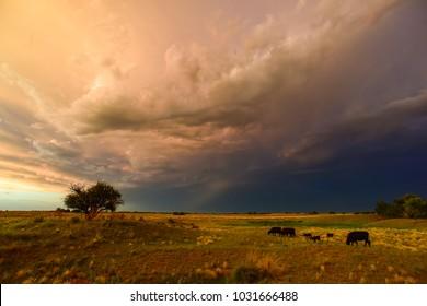 Stormy landscape, La pampa, Patagonia, Argentina
