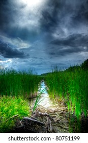 A stormy, ominous looking sky hovers over tall reeds and a small creek, as the sun pokes through to illuminate the marshland below.