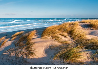 Stormy Sea and Beach with Coastal Dunes in the warm light of the morning sun