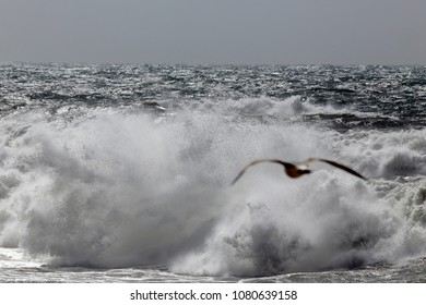 Stormy sea waves breaking on the portuguese north coast