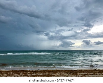 Stormy skies over a green atlantic ocean in the background with sunlight coming from the south. In the foreground a deserted beach strewn with seaweed (sargassum / gulfweed). Shot in Miami Beach, FL