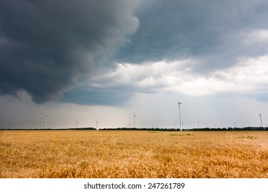 Stormy weather over wheat fields with windmills