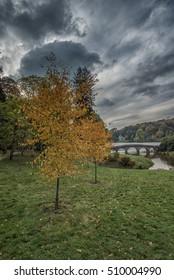 Stourhead Wiltshire Autumn Portrait