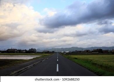 Straight country road between green rice fields under cloudy sky