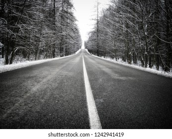Straight dark asphalt road after snowfall among snow covered trees, winter, snow, frost, white middle line. bad weather.  Can be also used to express  remoteness,endlessness,hopelessness , bad mood