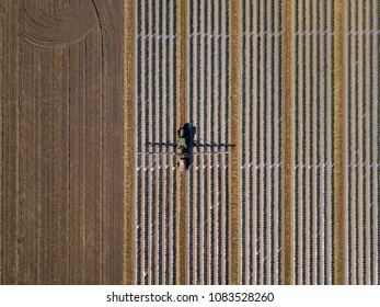 Straight down view of tractor spraying chemical fertilizer or pesticide on a tomato field.