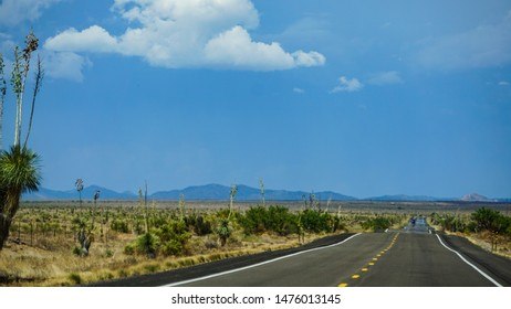 A straight expanse of highway on New Mexico state route 90, north of Lordsburg, south of Silver City through high arid desert with yucca plants