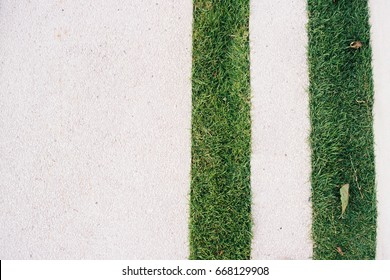 Straight line grass and space of white pavement