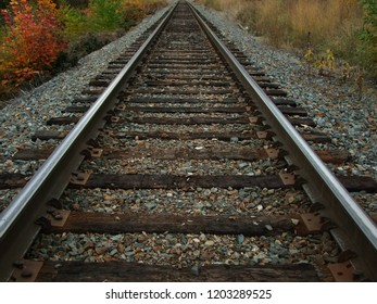 Straight on, low angle view of railroad tracks in Autumn, with yellow, gold and red shrubs at the sides of the railway tracks