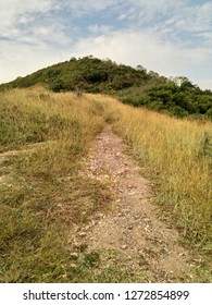 straight pathway through grass field to the top of the mountain, beautiful scenery of nature with blue sky