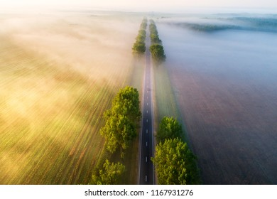 Straight road in  the morning view from above. Transportation background. Beautiful aerial landscape with road in colorful fog. Misty autumn nature.