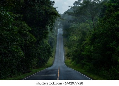 A straight steep road to entrance to Khao Yai national Park, Nakhon Rachasrima,Thailand in morning with mist and Fog