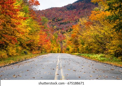 Straight Stretch of a Mountain Road Through a Colourful Forest of Maple Trees at the Fall Foliage Peak. Adirondacks, NY.