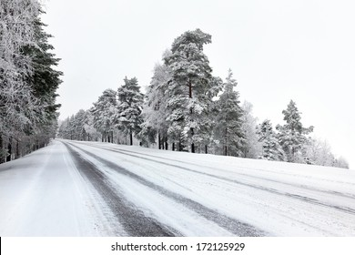 Straight winter road with trees on both sides on cloudy day