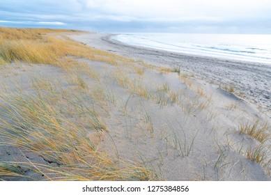Am Strand von Blavand, Dänemark