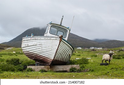 Stranded boat on a Scottish green field with sheep on the side. Isle of Harris, Outer Hebrides, Scotland, UK.