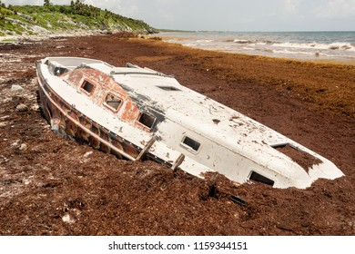 Stranded boat surrounded by Sargassum seaweed at Playa Santa Fe in Tulum, Mexico.