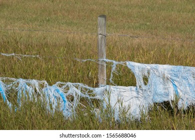 Strands of shredded blue plastic stuck to a barbed wire fence.