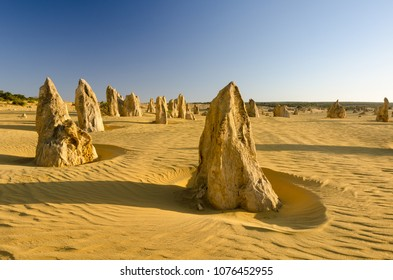 Strange limestone pillars emerge from the golden sand of the Pinnacles Desert in Nambung National Park, Western Australia. Lit by the late afternoon sun, with long shadows. 5
