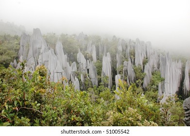 strange rock formations - pinnacles in Gunung Mulu National Park, Borneo, Malaysia