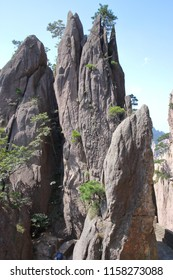 Strange shape of rock  and beautiful landscape in Huangshan Mountain, Huangshan City, Anhui Province, China.