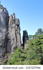 Strange stone and pine trees in Huangshan, Huangshan  City, Anhui Province, China.