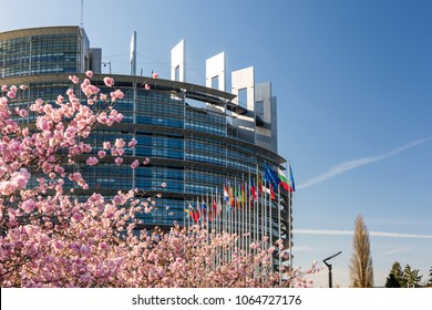 STRASBOURG, FRANCE - APRIL 6, 2018: European Parliament headquarter with cherry tree in bloom sakura flowers on a warm spring morning with all European union flags waving