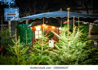 Strasbourg, France - Dec 20, 2016: Christmas market stall selling beautiful alsatian fir trees from Nord Vosges mountains ferme of Mr Zorn Nordman and Nobilis fir trees for sale