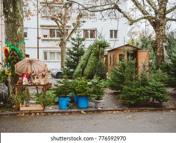 STRASBOURG, FRANCE - DEC 4, 2017: Christmas tree sale at the farmer market in central Strasbourg with evergreen fir trees from Alsace
