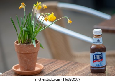 Stratford upon Avon Warwickshire England UK April 13th 2019 bottle of HP brown sauce on cafe table next to flower pot with miniature daffodils