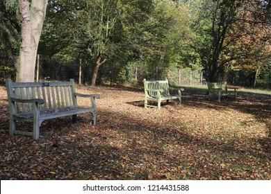 Stratford-upon-Avon, Warwickshire: Oct 2018: Anne Hathaway's cottage gardens in Warwickshire