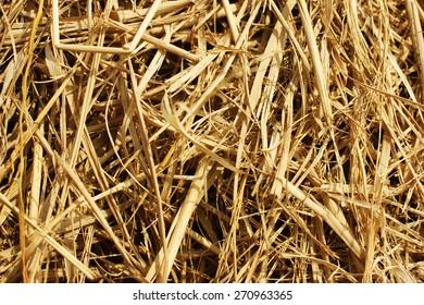 The straw background. Indian straw