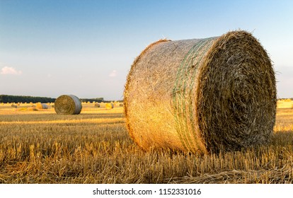 straw bale close up in summer, country landscape