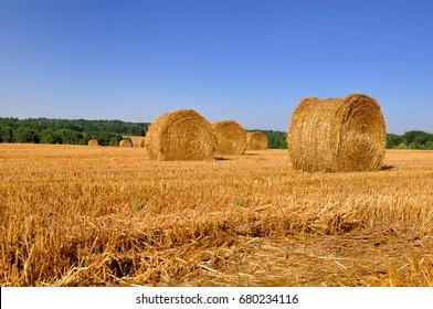straw bale in a field under blue sky