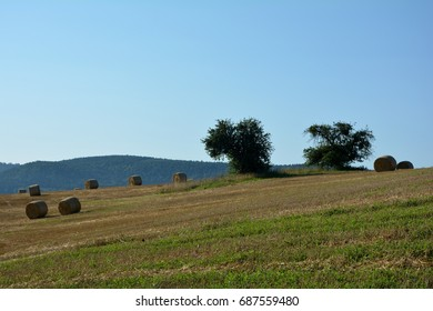 Straw bales lie in a landscape with blue sky
