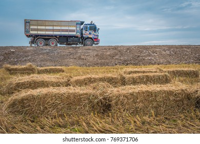 Straw bales on rice field in summer of Thailand.
