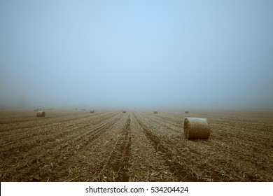 Straw bales on winter field