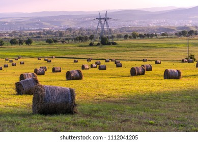 Straw balets at the springtime