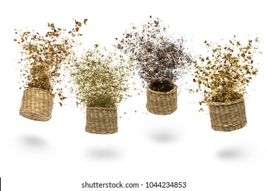 straw baskets with variety of tea blend flying on white background