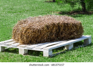 Straw briquette on white pallet prepared as animal feed. Dry hay stack on green grass background