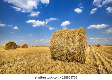 the straw combined nearby from each other a stack after the harvest company