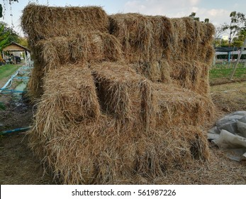 straw in farmland