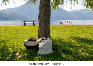 Straw hat and a picnic bag in the shadow of the tree in the park by the lake in Austria