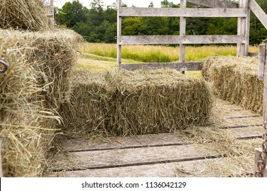 Straw hay bales in a wooden wagon in the hay field.