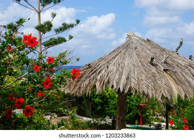 straw hut with red flowers near the coast of Sissi on Crete in Greece