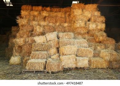 Straw stacks in the barn